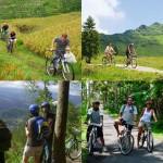 バカス社 サイクリング