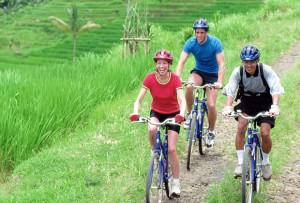 ソベック・サイクリング