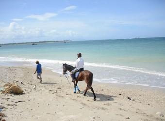 スランガンビーチ ホースライド